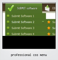 Professional Css Menu