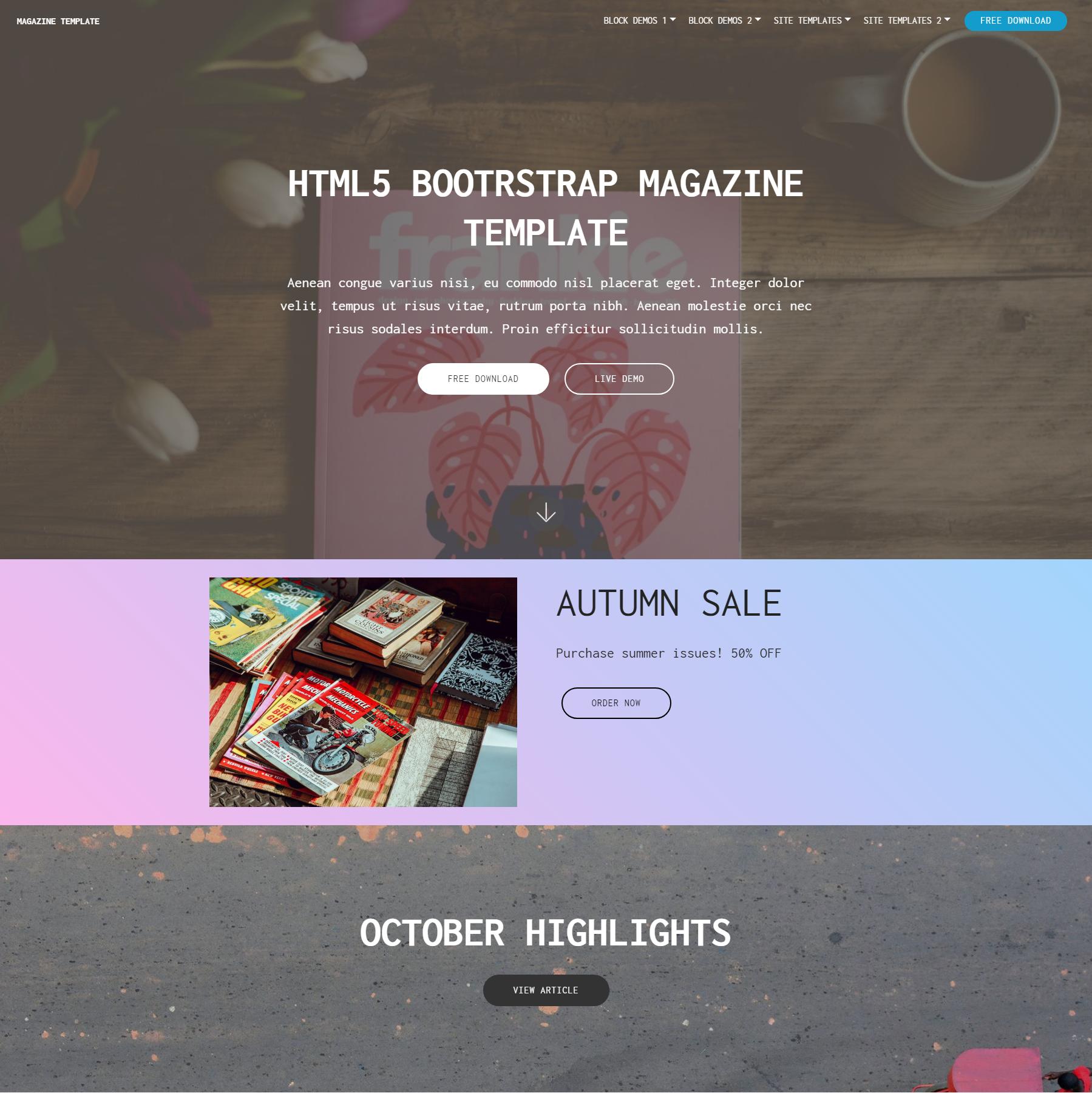 CSS3 Bootstrap Magazine Themes